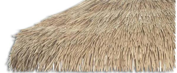 Palm Leaves Thatch